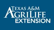 63rd Annual Pecan Show @ Extension Office Arrowhead Bank | San Saba | Texas | United States