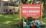Aunt M's Illustrated Inn